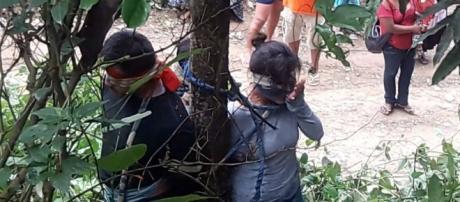 Boliviana e seus filhos são amarrados em árvore e sofrem ataque de formigas venenosas