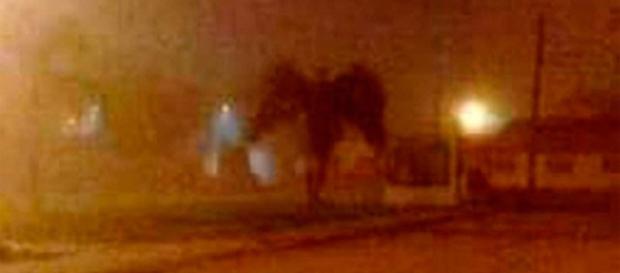 (foto) reprodução anjo da morte
