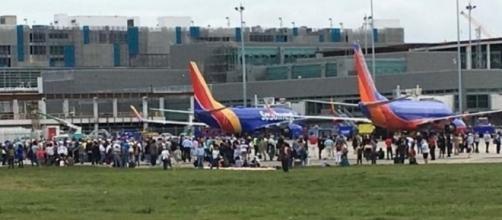 Panico all'aeroporto di Fort Lauderdale: un uomo ha ucciso 5 persone