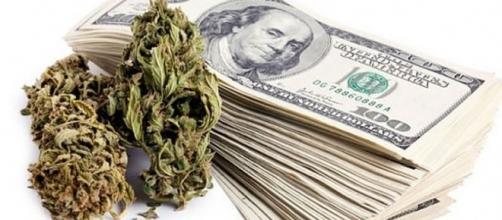 Business della marijuana in crescita esponenziale negli Usa