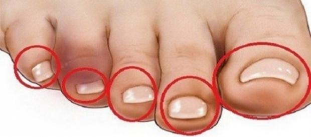 segundo a pesquisa, se uma pessoa consegue tocar os pés em uma determinada posição, ela está com a saúde do coração em dia.