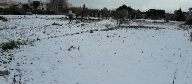 Tanta neve su tutto il Salento.