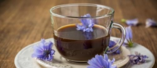 Achicoria, el café que no pone nervioso ni da insomnio