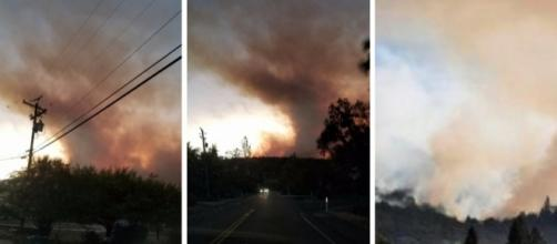Lobo Fire pictures. Image credit - Louann Carroll (Own Work)