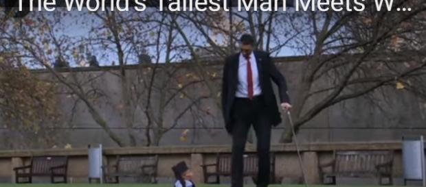 The World's Tallest Man Meets World's Smallest: 2015(image via Diagonal view/YouTube screencap)