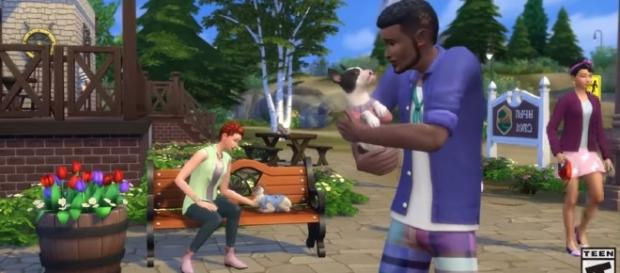 New trailer released for 'The Sims 4 Cats & Dogs' (The Sims/YouTube)