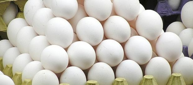 World Egg Day is celebrated on the second Friday in October [Image: pixabay.com]