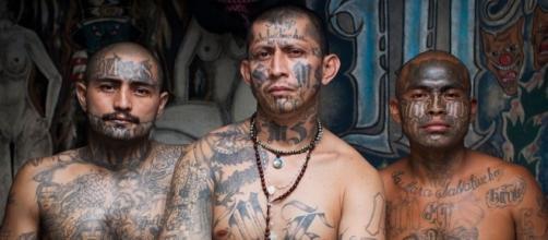 Os Mara Salvatruchas possuem a tatuagem como um elemento ritualístico de importância fundamental para o grupo.