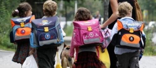 Stella, il cane randagio che accompagna i bambini a scuola - avellinotoday.it