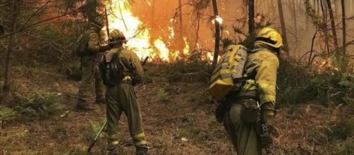 Una plaga de incendios intencionados quema 4.000 hectáreas en ... - diariocordoba.com