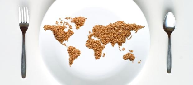 Dia 16 de outubro: Dia Mundial da Alimentação