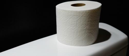 Vos fesses pourraient-elles se passer de papier toilette? | Slate.fr - slate.fr
