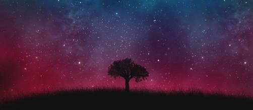 Your 'astral body' can travel where your physical body can't. (Image Credit: Cosmos Universe Galaxy Space Tree Background/Max Pixel)