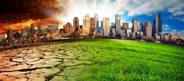 Novo gênero literário discute as mudanças climáticas e o futuro da humanidade