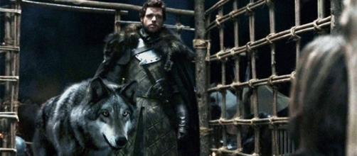 Juego de Tronos: ¡Todo lo que no sabes sobre los lobos gigantes de los Stark!