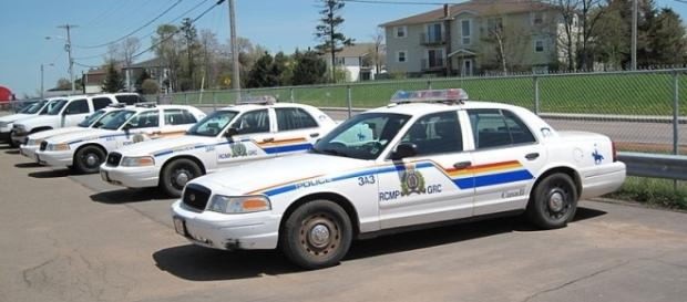 Cars of Royal Canadian Mounted Police (Image credit – Dickelbers – Wikimedia Commons)