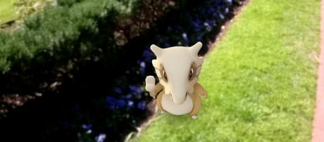 """A new round of pocket monsters are set to invade """"Pokemon Go"""" this Halloween/ photo by Alpha/ Flickr"""