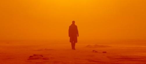Blade Runner 2049': The Horror News Network Review & Analysis ... - horrornewsnetwork.net