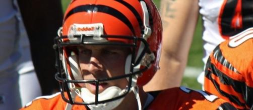 Mike Nugent [Image Credit: Jeffrey Beall/Wikimedia Commons]