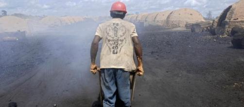 Trabalhador transporta carvão feito a partir de árvores nativas da Amazônia, em Ulianópolis, no Pará. (Reuters)