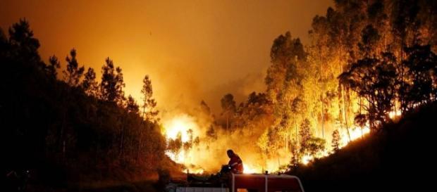 Incêndios em Portugal mataram várias dezenas de pessoas