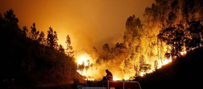 O que é que realmente o fogo nos levou?