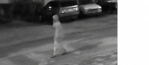 A cctv video grab released by police of the suspected killer.Police are asking the public to help identify the suspect[image credit;Tampa Police]