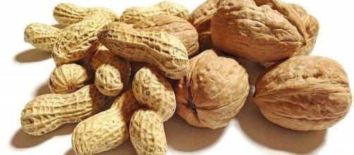October 22 is National Nut Day [Sherry/pixabay.com]