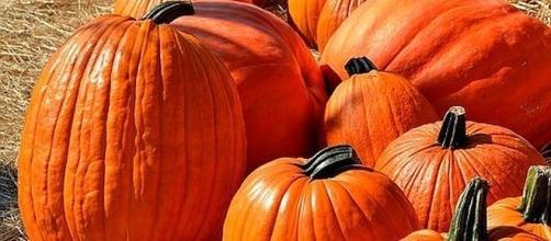October 26 is National Pumpkin Day [Image: paulbr75/pixabay.com]