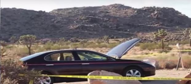 Hikers missing in California's scorching Joshua Tree park. [Image via Youtube/Animals and Discovery]