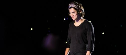 Harry Styles' alleged groping incident onstage outraged fans. (Image Credit: Javierosh/Flickr)