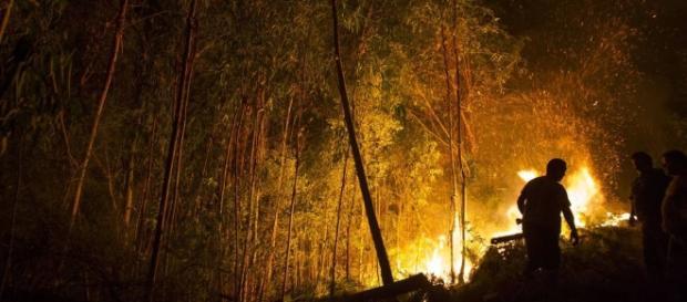 ¿Quién quema Galicia y por qué?