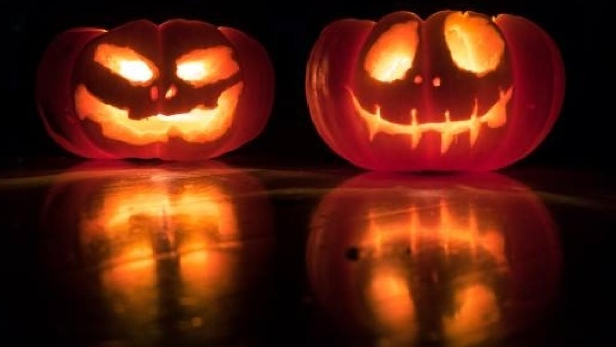 Intagliare Zucca Per Halloween Disegni halloween: come si prepara una zucca, si scava e si conserva