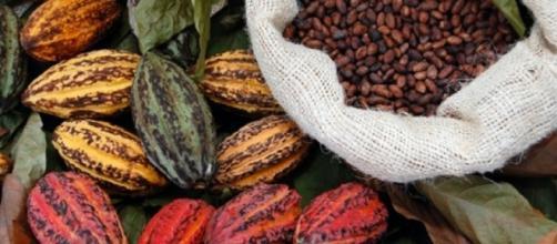 Report, cioccolato di Modica è una bufala storica