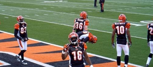 The Bengals messed up. [Image via Belgarion The King/Wikimedia Commons]