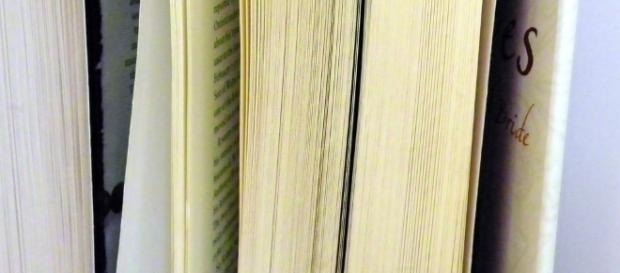 Books / Dorothy Cook via Flickr