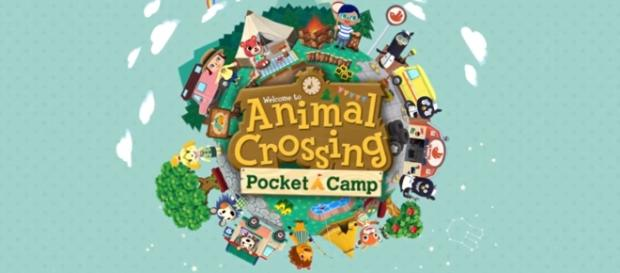 The official logo of Pocket Camp. Image Credit: Youtube/Nintendo mobile