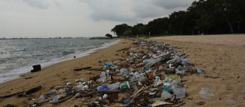 Plastic waste pollution on the beach. (Image via Vaidehi Shah / Wikimedia Commons)
