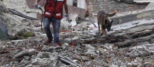 Un malagueño permanece atrapado bajo los escombros de un inmueble ... - deia.com