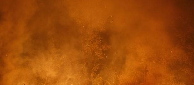 Le foto dei grandi incendi in Portogallo e Spagna - Il Post - ilpost.it