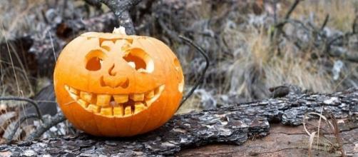 La mitica zucca di Halloween (Ph. cogdogblog)