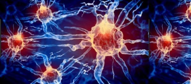 Crise epilética: uma descarga elétrica de neurônios mais duradoura que as habituais