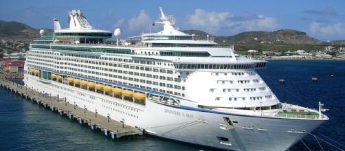 Royal Caribbean cruise ship 'Adventure of the Seas' (Image credit – Roger W. – Wikimedia Commons)