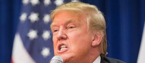 TRUMP MELTS DOWN, TRASHES EVERY AMERICAN WHO IS AGAINST HIS MUSLIM ... - democraticunderground.com