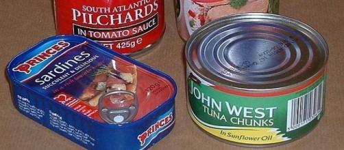 Americans' love for seafood is boosting North Korean economy. [Image Credit: Gaius Cornelius/Wikimedia Commons]