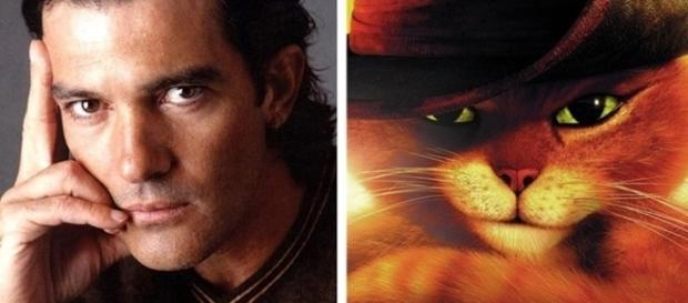 Eles ganharam semelhanças incríveis ( Fotos -listal/DreamWorks SKG )