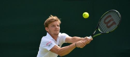 David Goffin defeated Adrian Mannarino, 6-3, 7-5, in Sunday's final -- Carine06 via WikiCommons