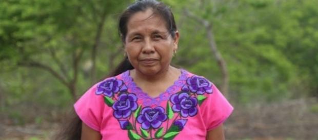 Marichuy es la primera mujer indígena en aspirar a la presidencia de México.