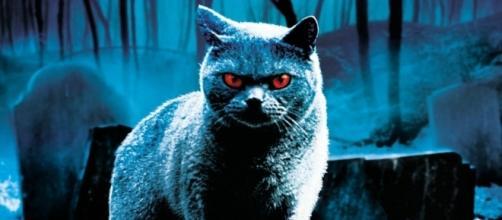 """Il Cimitero Vivente degli animali riaprirà nella nuova versione di """"Pet Sematary"""""""