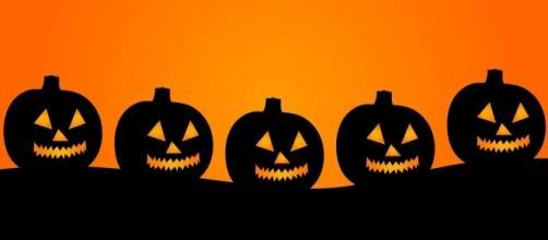Las calabazas son uno de los típicos adornos de Halloween. (Via Public Domain Pictures).